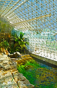 Biosphere2 - Environment 2 Print by Gregory Dyer