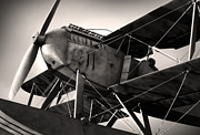 Antique Airplane Photos - Biplane by Carlos Caetano