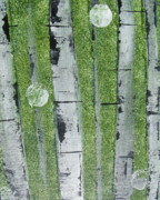 Wine Flowing Prints - Birch - Green 1 Print by Jacqueline Athmann