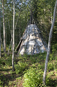 River Of Life Prints - Birch Bark Teepee In The Woods Print by Skip Brown