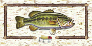 Bass Fishing Prints - Birch Bass Print by JQ Licensing