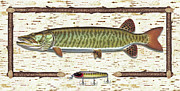 Tackle Metal Prints - Birch Musky Metal Print by JQ Licensing