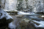 Birch River Prints - Birch River in January Print by Thomas R Fletcher