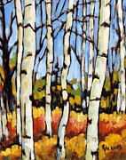 Prankearts Paintings - Birch Study by Prankearts by Richard T Pranke