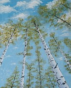 Original Acrylic Paintings - Birch Trees and Sky by Georgeta  Blanaru