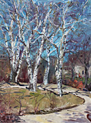 Birch Trees Paintings - Birch trees next door by Ylli Haruni