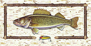 Lake Metal Prints - Birch Walleye Metal Print by JQ Licensing