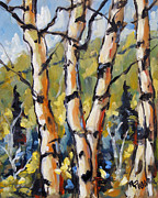 Original  By Artist Paintings - Birches Aglow by Prankearts by Richard T Pranke