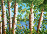 Brenda Baker - Birches Along the...