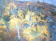 Autumn Foliage Pastels Prints - Birches by the Bay of Fundy Print by Rose Wark