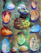 Colored Pencil Mixed Media Posters - Bird Eggs Poster by Mindy Newman