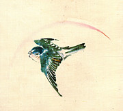 Sketchbook Photo Prints - Bird Flying 1840 Print by Padre Art
