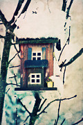 Bird House Print by Angela Doelling AD DESIGN Photo and PhotoArt