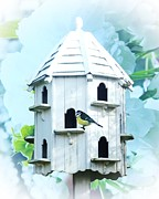 Tit Framed Prints - Bird House Framed Print by Sharon Lisa Clarke