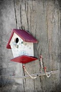 Textured Bird Posters - Bird House Poster by Sophie Vigneault