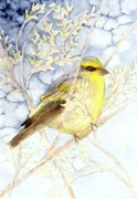 Canary Paintings - Bird in a Tree by Constance Larimer