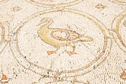 Byzantine Art - Bird Mosaic Duck Detail by Photostock-israel