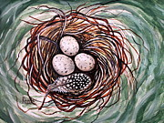Bird Art - Bird Nest and a Feather by Elizabeth Robinette Tyndall