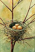 Frank Wilson Framed Prints - Bird Nest Framed Print by Frank Wilson