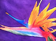 Bonnie Wright Metal Prints - Bird of Paradise Metal Print by Bonnie Wright