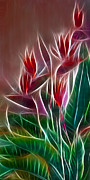 Morphed Metal Prints - Bird of Paradise Fractal Metal Print by Peter Piatt