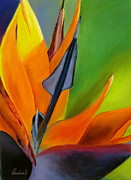 Bird Of Paradise Flower Pastels - Bird of Paradise by Prashant Shah