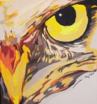 Color Pencil Paintings - Bird of Prey  Owl by Steve Teets
