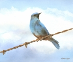 Watercolor Art - Bird On A Wire by Arline Wagner