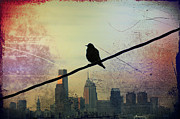 Cityscape Digital Art Metal Prints - Bird on a Wire Metal Print by Bill Cannon