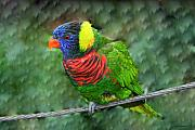 Vibrant Colors Framed Prints - Bird on a wire Framed Print by Linda Sannuti