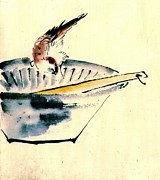 Sketchbook Posters - Bird Perched on Bowl 1840 Poster by Padre Art