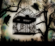 New Age Digital Art Prints - Birdcage Print by Gothicolors With Crows