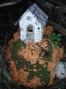 Birdhouse Photos Photos - Birdhouse With Mushroom Yard by Jeannie Atwater Jordan Allen