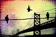 Ben Franklin Bridge Prints - Birds Eye View Print by Bill Cannon