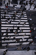 Crowds  Prints - Birds-eye View Of A Busy Crosswalk Print by Pablo Corral Vega
