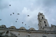 Flocks Of Birds Prints - Birds flying above the basilica and the monastery of Saint Francis of Assisi Print by Sami Sarkis