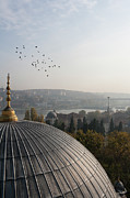 Flying Turkey Prints - Birds Flying Over Eyup Camii Mosque Print by Michael Turek