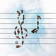 Flock Of Bird Art - Birds Forming Treble Clef And Quaver by Gandee Vasan