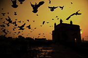 Flock Of Bird Framed Prints - Birds In Flight At Gateway Of India Framed Print by Photograph by Jayati Saha