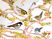Chickadee Tapestries - Textiles Prints - Birds In My Backyard Print by Alexandra  Sanders