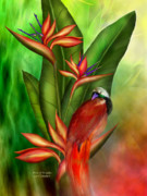 Print Card Mixed Media Framed Prints - Birds Of Paradise Framed Print by Carol Cavalaris