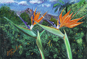 Bird Of Paradise Flower Pastels - Birds of Paradise by Jim Barber Hove