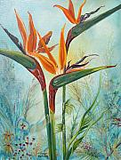 John Keaton Paintings - Birds Of Paradise by John Keaton
