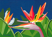 Colorful Floral Gardens Paintings - Birds of Paradise by Terry Taylor