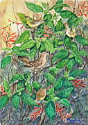 Starlings Paintings - Birds on Pineapple Sage by Phong Trinh