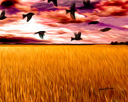 Blackbirds Posters - Birds Over Wheat Field Poster by Anthony Caruso