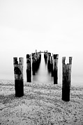 Sitting Photos - Birds Resting On A Derelict Pier by Scott Masterton