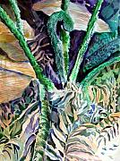 Fern Drawings - Birth of a Palm Tree by Mindy Newman