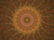Focusing Metal Prints - Birthing Mandala 18 Metal Print by Rhonda Barrett