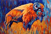 Abstract Expressionist Posters - Bison At Dusk Poster by Theresa Paden